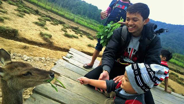 Berwisata dengan Low Budget Di Kampung Cai Ranca Upas