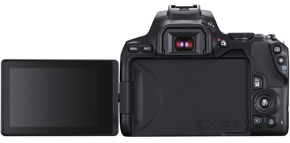 Canon EOS 250D, вид сзади
