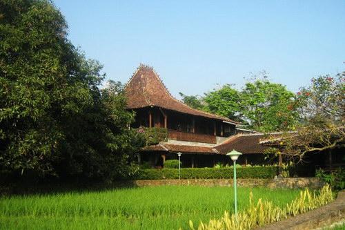 Rumah Joglo Rumah Adat Tradisional Jawa Seputar Semarang