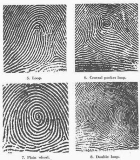 finger-Prints-research
