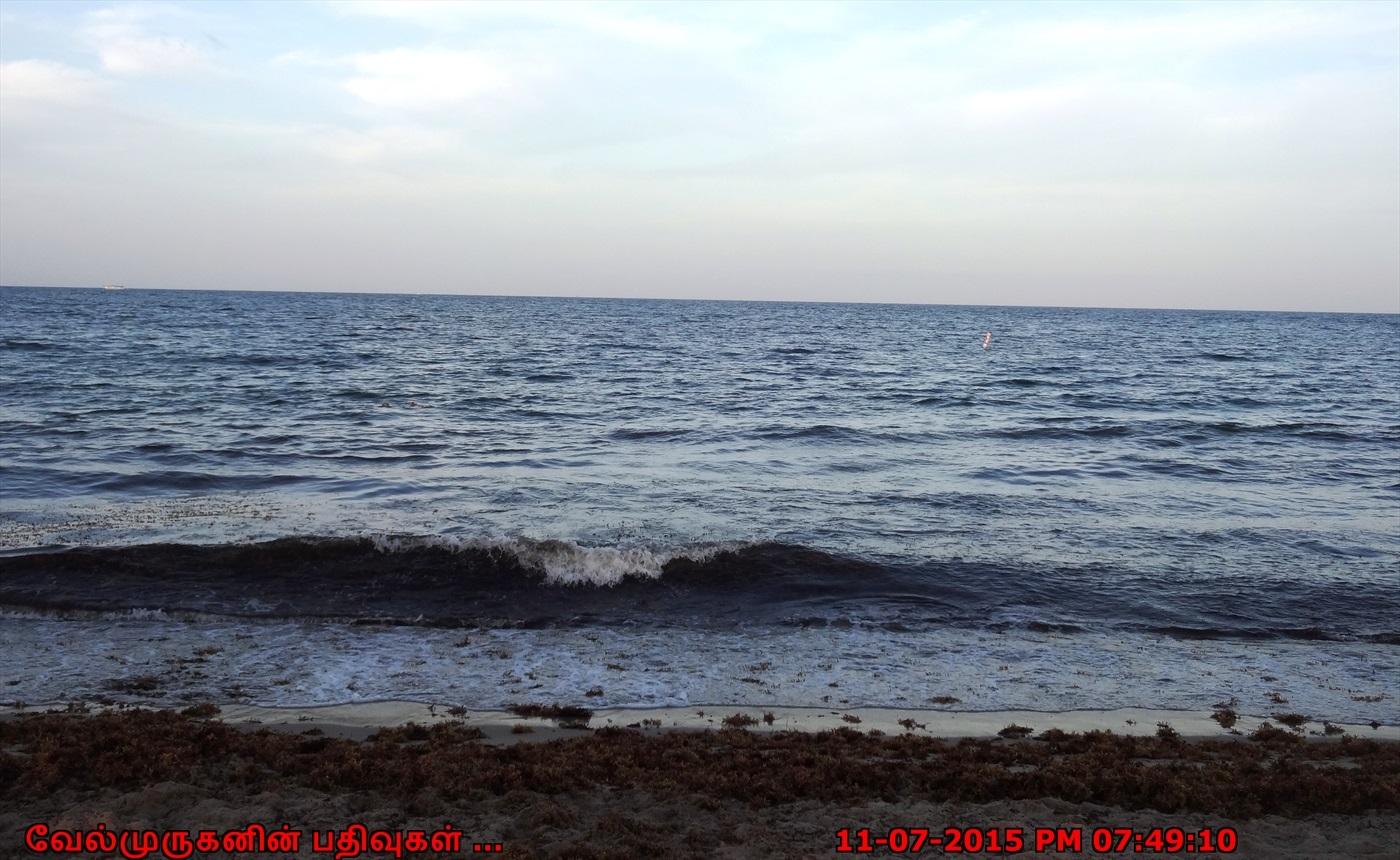 Pompano Beach Attractions