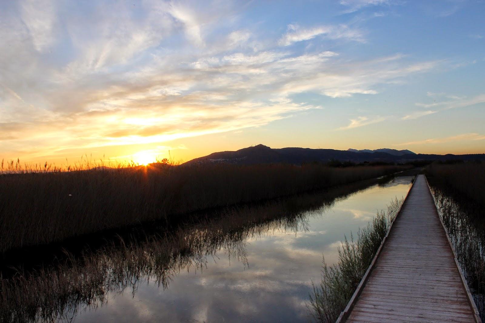 Puesta de sol en la Marjal dels Moros-Sagunto