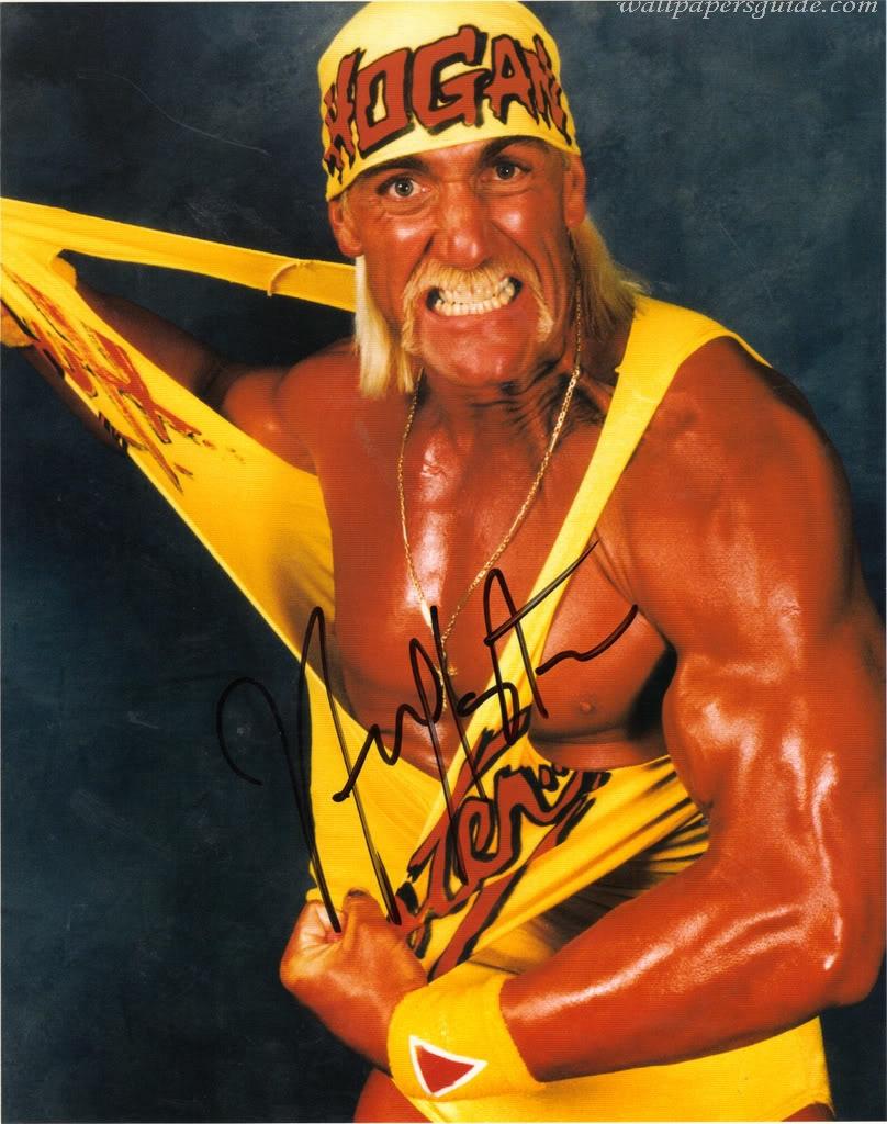 Hollywood Hulk Hogan Wallpapers Cute Girls Celebrity