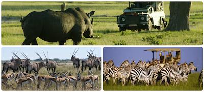 Bostsuana y Zimbabwe
