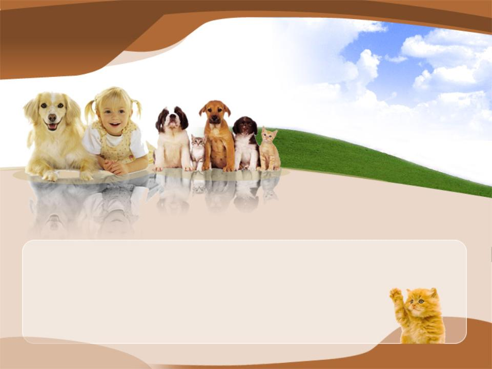animal powerpoint template 2
