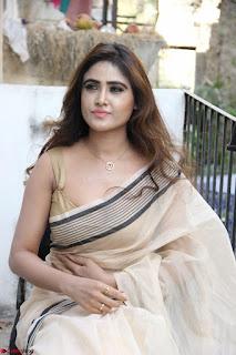 Sony Charishta in Brown saree Cute Beauty   IMG 3615 1600x1067.JPG