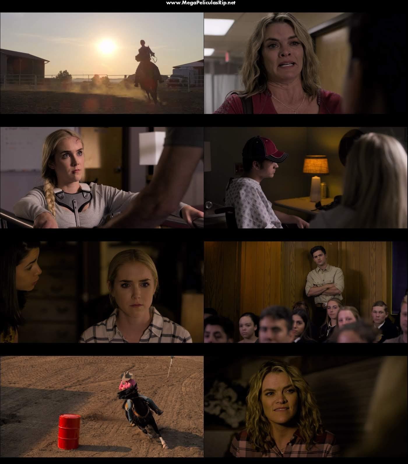 La Vida Es Un Rodeo 1080p Latino