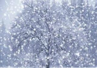 Teks Eksplanasi Proses Terjadinya Salju