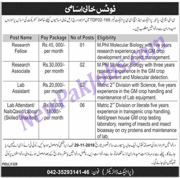jobs-available-in-lahore