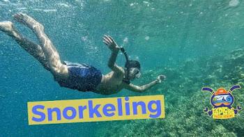 selam permukaan atau snorkeling