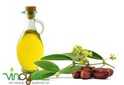 dầu jojoban nguyên chất