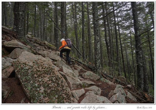 Pemetic: ... and granite rocks left by glaciers...