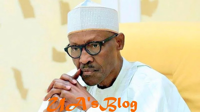 2019: ACF speaks on 'rejection' of Buhari's candidacy