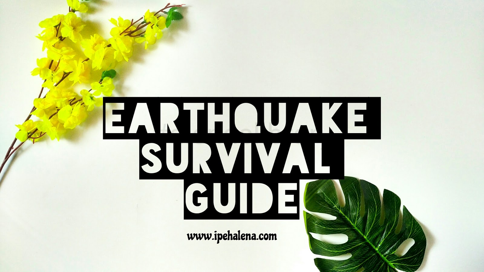 earthquake survival We spent 30 hours interviewing experts to show you how to prepare for earthquakes and build a great earthquake survival kit don't be a victim.