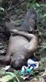 Jenazah korban saat ditemukan.