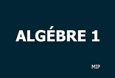 algebre 1 mip