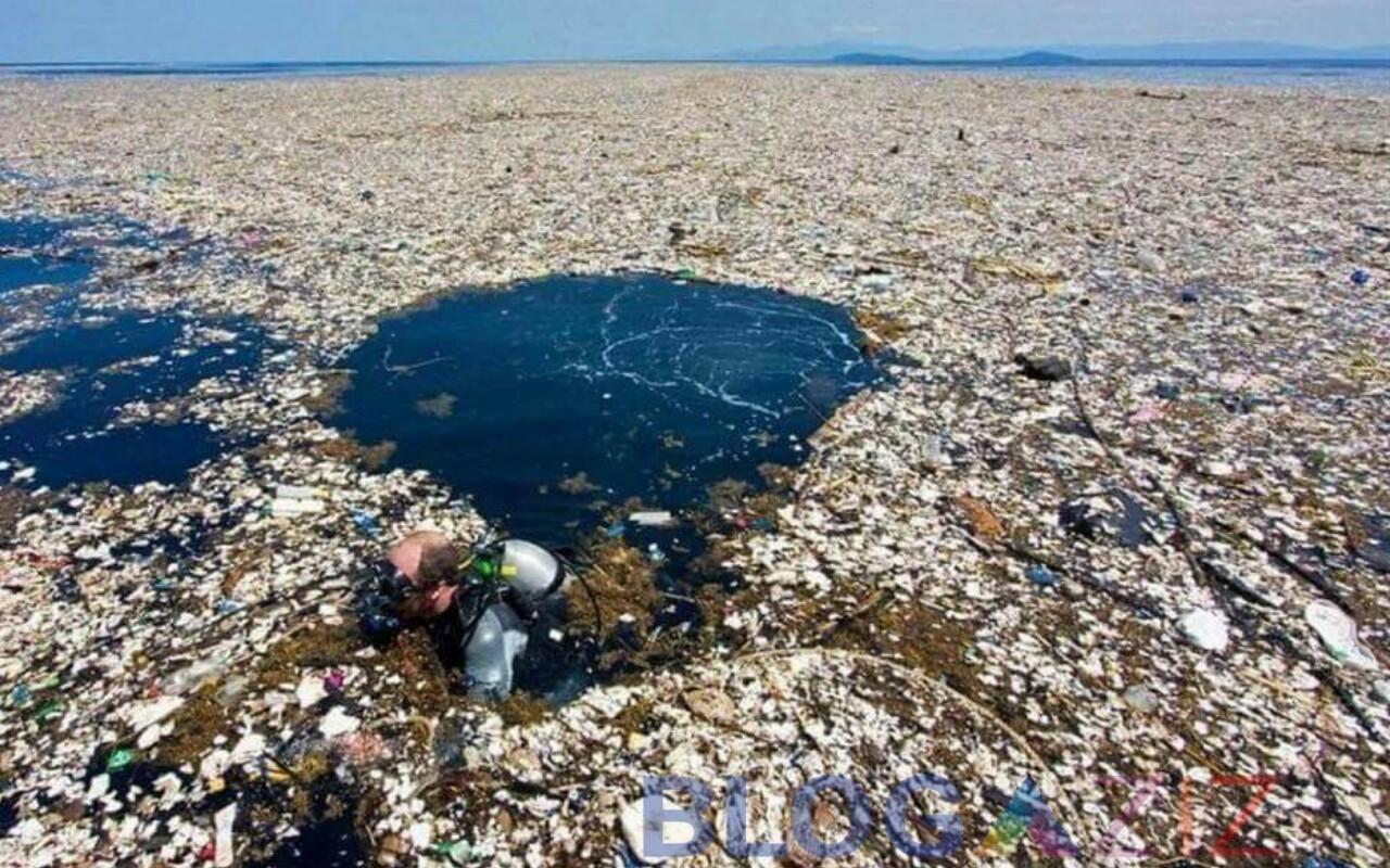 Laut Biru menjadi Bangkai
