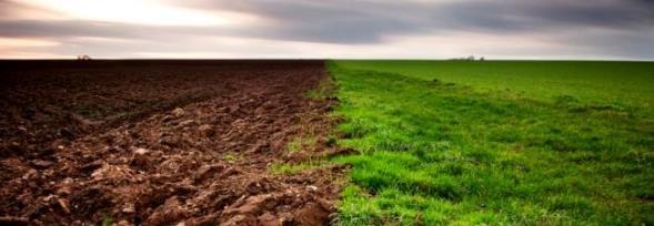 Suelo temas ambientales ecol gicos y sustentables for Recurso clausula suelo