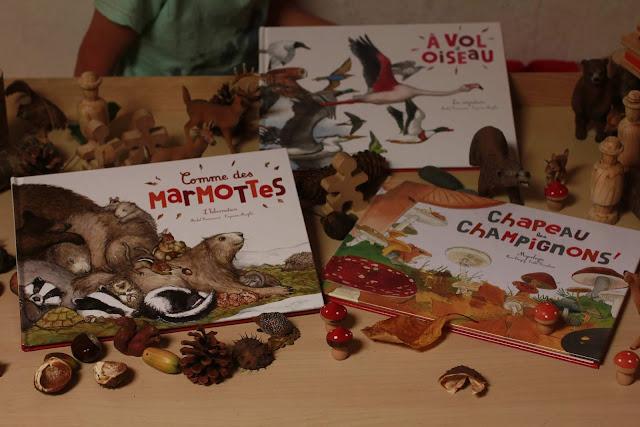collection livres ohé la science comme des marmottes, a vol d'oiseaul chapeau les champignons