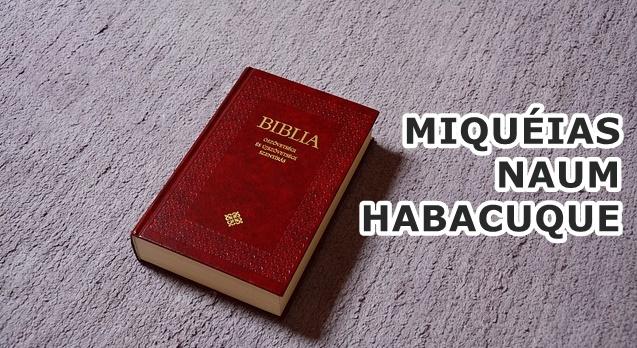 Perguntas Miqueias, naum e habacuque