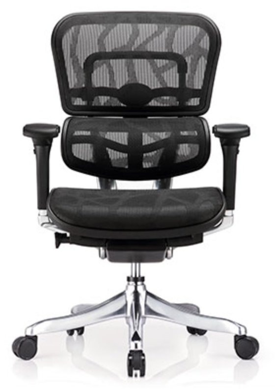Ergohuman Elite Mid Back Ergonomic Chair by Eurotech