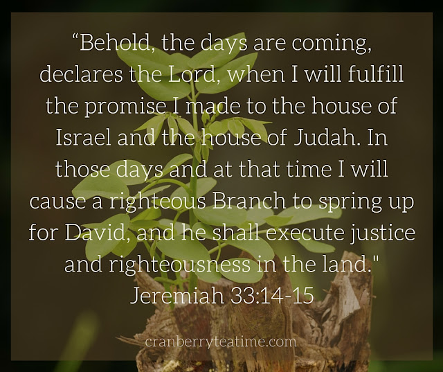 """Behold, the days are coming, declares the Lord, when I will fulfill the promise I made to the house of Israel and the house of Judah. In those days and at that time I will cause a righteous Branch to spring up for David, and he shall execute justice and righteousness in the land."" Jeremiah 33:14-15"
