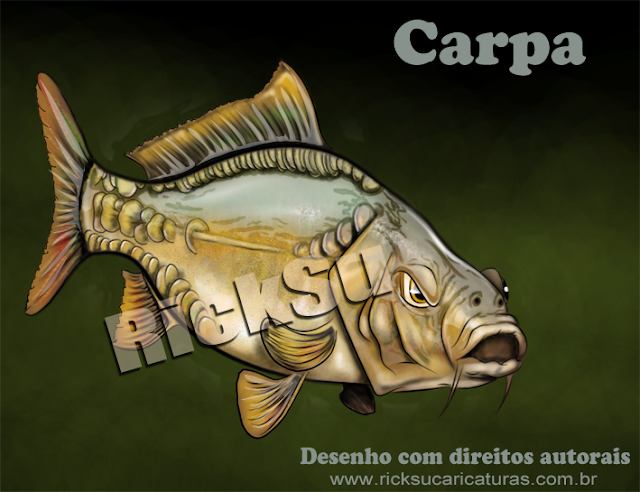 ilustração de carpa para grupo de pescas