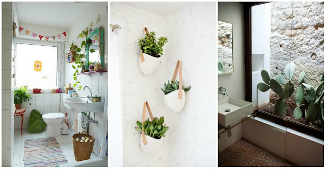 guest bathroom design with plants