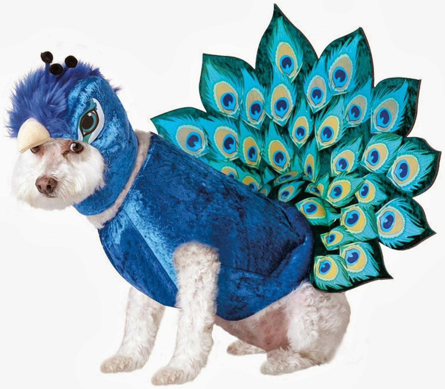 Best Halloween Costume Deals: Halloween Pet Costumes
