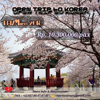 Open trip to Korea Selatan
