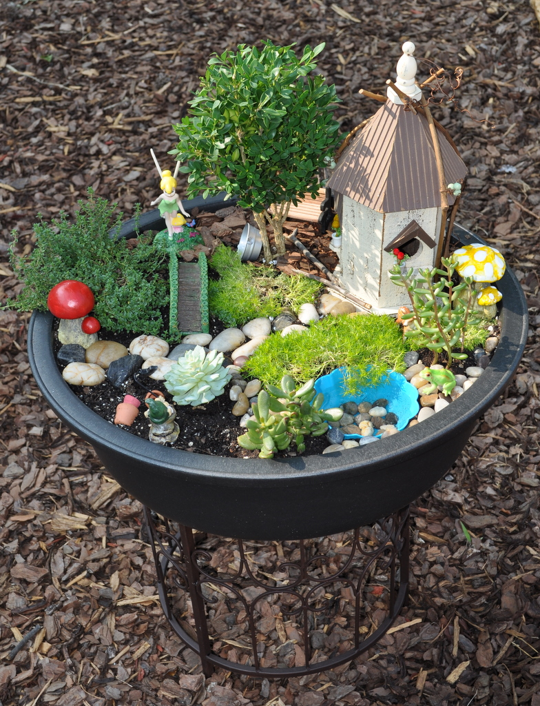 Design To Shine: My Fairy Garden