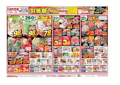 【PR】フードスクエア/越谷ツインシティ店のチラシ11月20日号