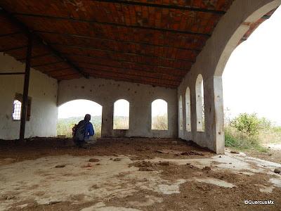 QuercusMx observando el Cerro El Patomo desde Cerro Viejo   en una finca abandonada usada solo para ganado