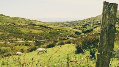 Rolling Hills of Ireland