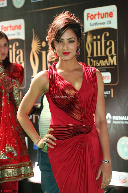 Videesha in Spicy Floor Length Red Sleeveless Gown at IIFA Utsavam Awards 2017  Day 2  Exclusive 01.JPG