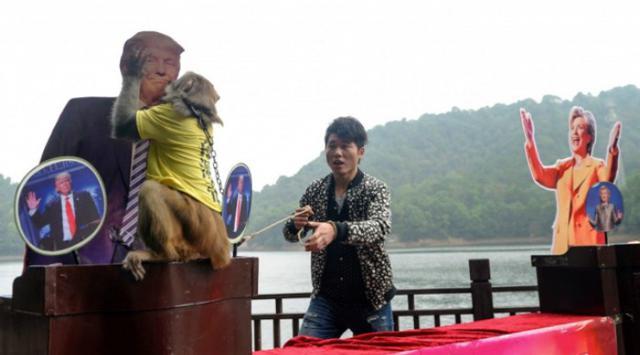 Presiden Donald dicium Monyet Tiongkok