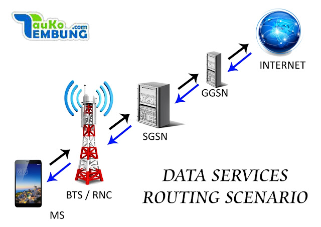 DATA SERVICES ROUTING SCENARIO