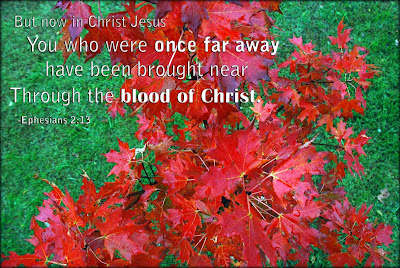 Ephesians 2:13 red fall leaves
