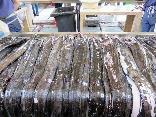 black scabbardfish (espada) at Mercado dos Lavradores on Funchal, Madeira