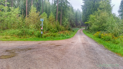 21. Drei Talsperren Marathon 2016 Eibenstock Erzgebirge Kreuzung