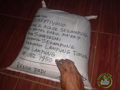 Benih Padi Pesanan  SUDIRMAN Lampung Timur, Lampung.  Benih Sesudah di Packing