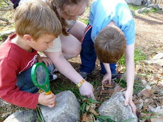 kids find insects under rock