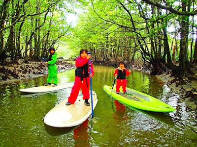 西表島旅行で人気No1のSUPツアーで2018年最高の島旅を!ケンガイドおすすめSUP秘境パワースポット巡りやシュノーケル・キャニオニングなど遊びは自由自在!女子旅行・学生旅行・家族旅行で観光アクティビティSUP体験を、西表島でSUP遊びを満喫しよう。