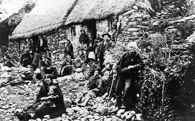 A comparison of irish and african american immigrants