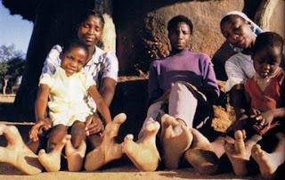Tribu pies avestruz