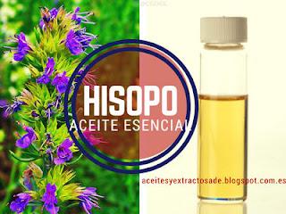 El aceite esencial de hisopo es muy popular por sus propiedades astringentes