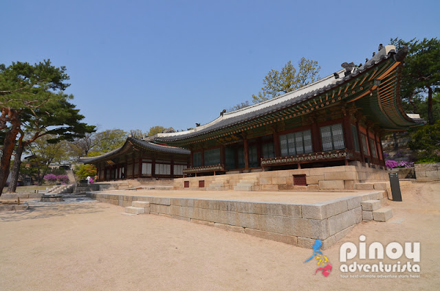 KOREA ON A BUDGET TRAVEL GUIDE BLOG 2019