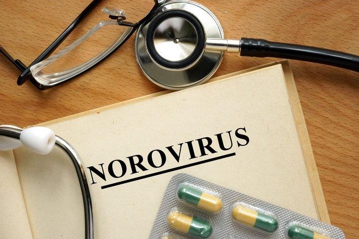 Allerta Virus invernale Norovirus, porta vomito e diarrea | Salute News