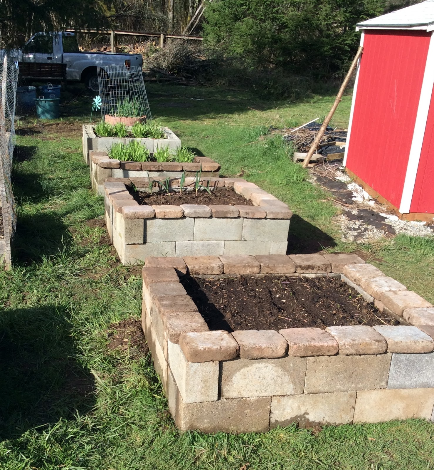 Reclaimed Concrete Blocks: Growing Greener In The Pacific Northwest: Raised Beds