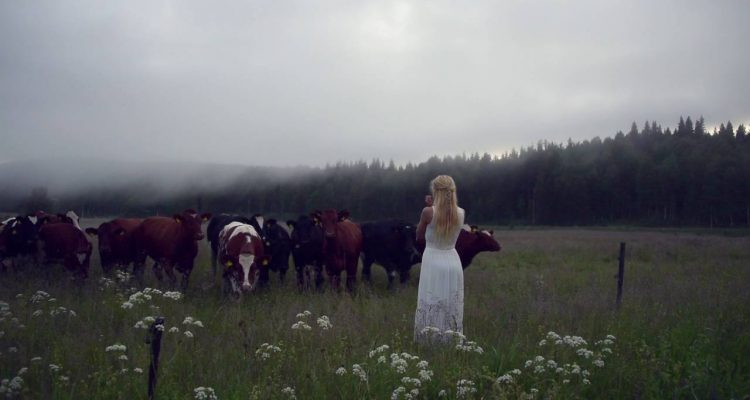 Woman 'Sings' In A Hauntingly Beautiful Voice To Summon Cows